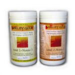Barley_Gold__16_oz-8345